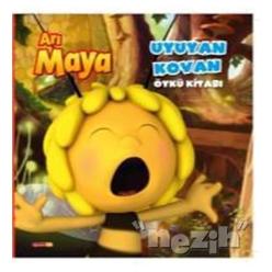 Arı Maya - Uyuyan Kovan - Thumbnail