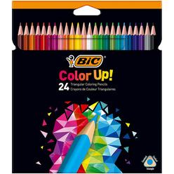 Bic Color Up Üçgen Kuru Boya Kalemi 24 Renk 950528 - Thumbnail