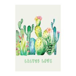 Deffter Cactus Love Sert Kapak 64415-5 - Thumbnail