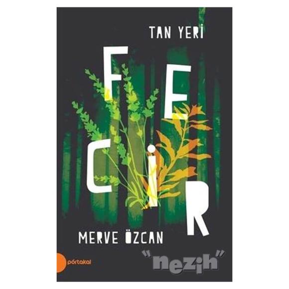 Fecir - Tan Yeri 2