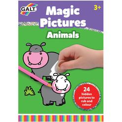 Galt Magic Pictures Aktivite Kitabı Hayvanlar L1413L - Thumbnail