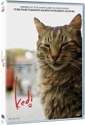Kedi - DVD - Thumbnail