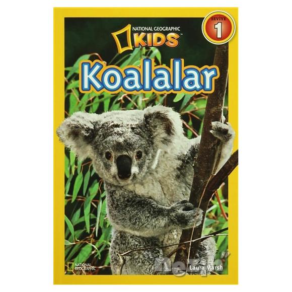 Koalalar - Seviye 1