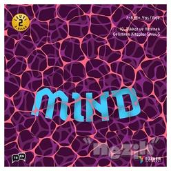 Mind - IQ Dikkat ve Yetenek Geliştiren Kitaplar Serisi 5 (Level 2) (7-8-9 Yaş) - Thumbnail