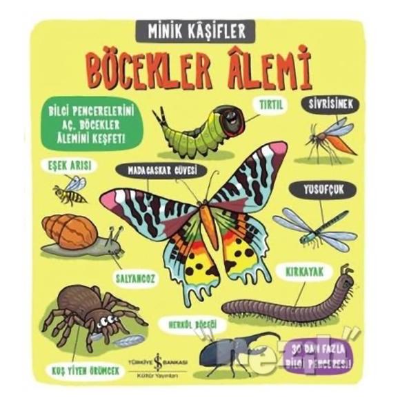 Minik Kaşifler - Böcekler Alemi