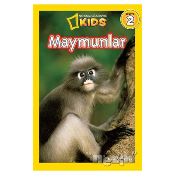 National Geographic Kids Maymunlar