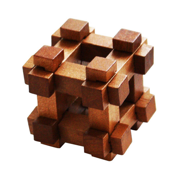 Professor Puzzle Great Minds Darwin's Chest Ahşap Mini Puzzle