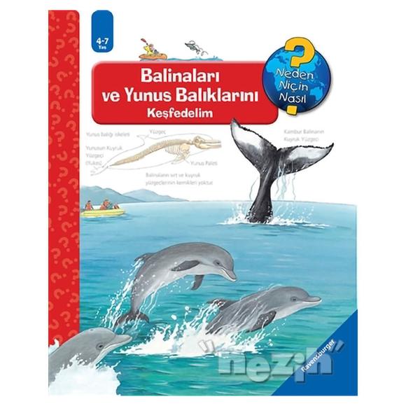 Ravensburger Maksi - Balinaları ve Yunus Balıklarını Keşfedelim