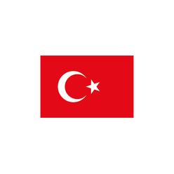 Vatan Türk Bayrağı 20x30 cm VT101 - Thumbnail