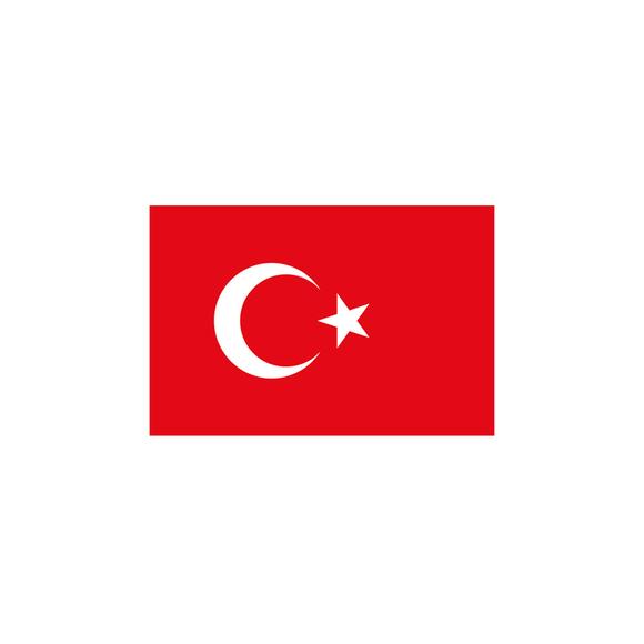 Vatan Türk Bayrağı 20x30 cm VT101